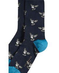 Ted Baker Blue Tiffru Owl Socks for men