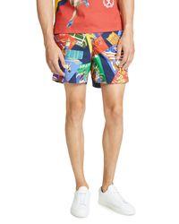 Polo Ralph Lauren Blue Chariots Postcard Shorts for men