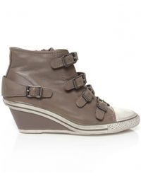 Ash - Gray Genial Buckle Wedge Trainers - Lyst