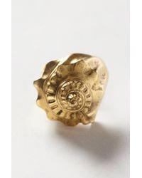 Tribune Standard - Metallic Concha Marina Ring - Lyst