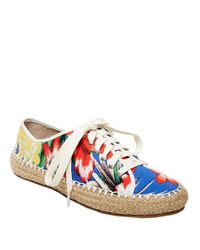 Steve Madden Multicolor Broadwlk Espadrille Lace-up Sneakers