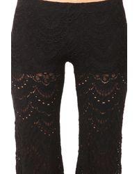 Nightcap Black Spanish Lace Pant