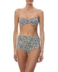 Prism Multicolor St Tropez Leopard-Print Bikini Top