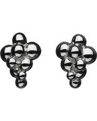 Links of London - Metallic Effervescence Sterling Silver Stud Earrings - Lyst