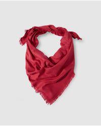 Gloria Ortiz Red Burgundy Jacquard Print Handkerchief
