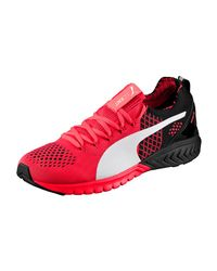 PUMA Red Ignite Dual Evoknit Asphalt Running Shoes for men