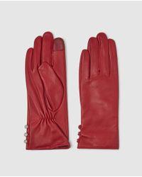 Guantes De Piel En Rojo Con Botones Lauren by Ralph Lauren de color Red