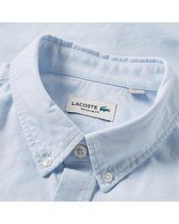 Lacoste Blue Button Down Oxford Shirt for men
