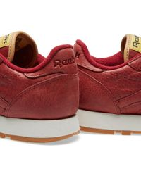 Reebok Red Classic Leather Boxing for men