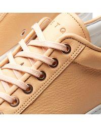 ETQ Amsterdam Multicolor Etq. Low Top 1 Rugged Sneaker