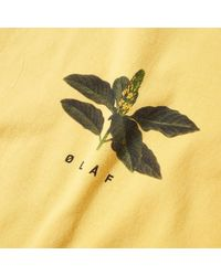 Olaf Hussein Yellow Evergreen Plant Tee for men