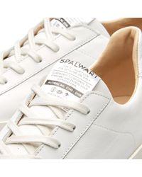 Spalwart White Court Nappa Low