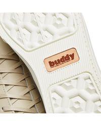 Buddy Gray Bull Terrier Low Chubby for men