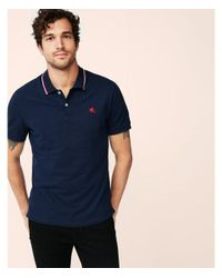 Express Blue Small Lion Tipped Stretch Pique Polo for men
