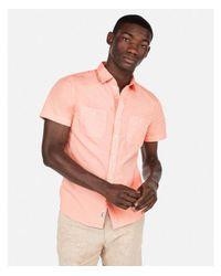 Express Pink Big & Tall Solid Short Sleeve Shirt for men