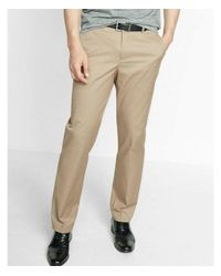 Express Multicolor Men's Big & Tall Relaxed Stretch Cotton Dress Pants for men