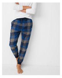 Express Blue Checkered Cotton Jogger Pant for men