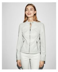 Express Gray Double Peplum Faux Leather Jacket