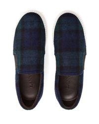 Lanvin Blue Tartan Skater Shoes for men