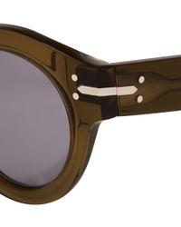 Céline Green Olive Teddy Round Acetate Sunglasses