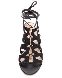 Sam Edelman Black Ardella Low Heel Sandals Putty