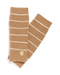 Vince Camuto Natural Stripe Arm Warmers