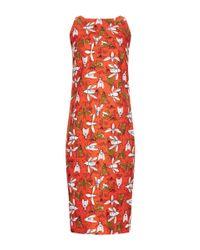 Carolina Herrera | Multicolor Bee Family Gathering Print Dress | Lyst