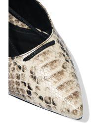 Schutz Multicolor Beryl Snake-effect Leather Point-toe Flats