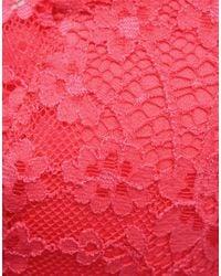 Agent Provocateur Pink Lolah Suspender Coral