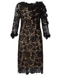 Jacques Vert Metallic Floral Lace Dress