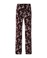 Giamba | Purple Lily Of The Valley Smooth Velvet Relaxed Pants | Lyst