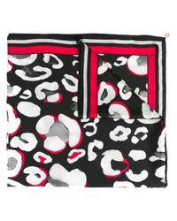 Class Roberto Cavalli パターン スカーフ Multicolor