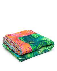 Полотенце С Принтом Versace, цвет: Green
