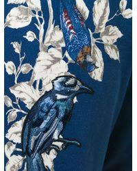 Dolce & Gabbana Blue Bird Print Track Pants for men