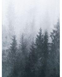 Orlebar Brown - White Forest Print T-shirt for Men - Lyst