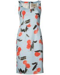 Carolina Herrera   Blue Cherry Print Sleeveless Dress   Lyst