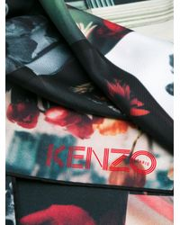 KENZO Multicolor Floral Print Scarf