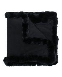 N.Peal Cashmere ファートリムスカーフ Black