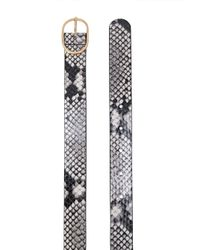 Emmie mini python print belt di B-Low The Belt in Multicolor