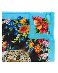 Dolce & Gabbana Blue Floral And Leopard Print Scarf