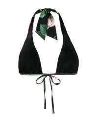 Dolce & Gabbana ローズ プリント ビキニトップ Multicolor