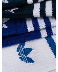 Adidas ロゴ靴下 Blue