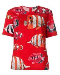 Dolce & Gabbana Red Tropical Fish Print Top