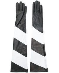 Manokhi Black Contrast Long Gloves