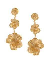 Meadowlark Metallic Coral Drop Earrings