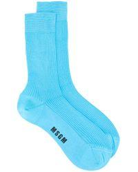 Calzini con stampa di MSGM in Blue