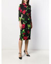 Dolce & Gabbana ローズプリント ペンシルドレス Multicolor