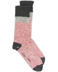 YMC Red X Corgi Colour Block Socks