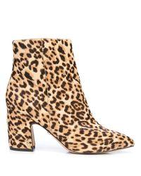 Sam Edelman Black Hilty Leopard Print Boots