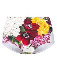 Dolce & Gabbana フローラル ビキニボトム Multicolor